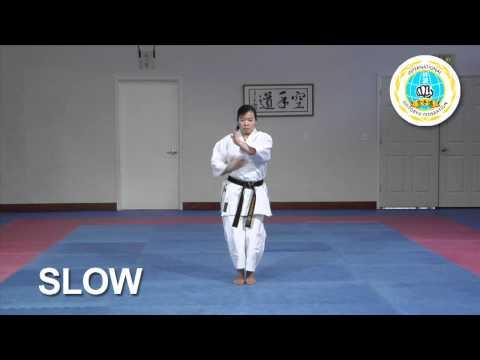 Niseishi - International Hayashi-Ha Shito-Ryu