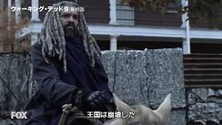 「ウォーキング・デッド シーズン9」第16話『嵐の予感』予告編