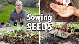 What is to sow the seeds