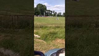 Бійка в селі Бариш