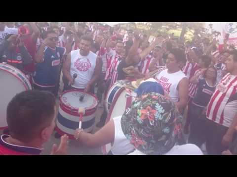 """""""Porra de Chivas Barra Insurgencia Estadio Cuauhtemoc 2016"""" Barra: Barra Insurgencia • Club: Chivas Guadalajara"""
