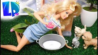 Rodzinka Barbie - Szczeniaczek w SPA dla zwierząt! Zwierzaki łobuziaki!!!