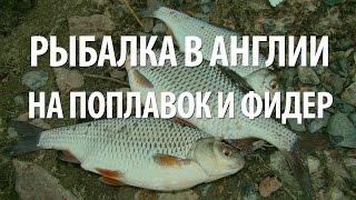 Рыбная ловля в англии