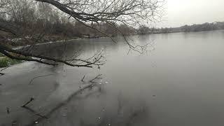 Отчеты о рыбалки река пахра