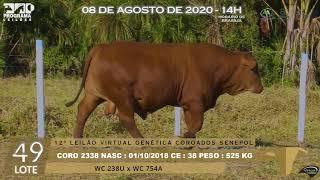 Coro 2338 b4 fiv