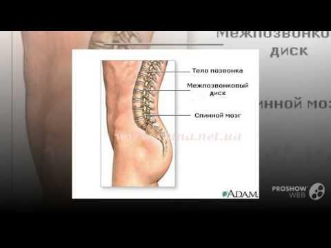 Лечение спины в брянск
