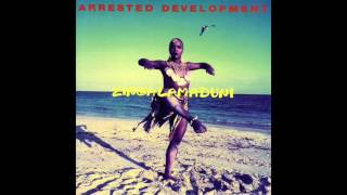Arrested Development ‎– Africa's Inside Of Me - Zingalamaduni
