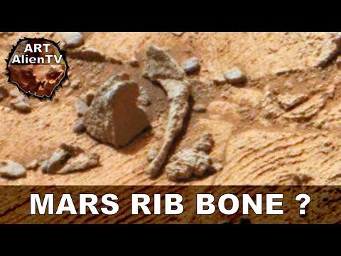 MARS RIB BONE ? LATEST ALIEN ANOMALY. ArtAlienTV – MARS ZOO 1080p