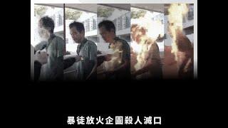政治揭露196a 林鄭想香港人死/蕭若元老作屈阿伯被燒係特技人/我喊因為太殘忍/林鄭9up完繼續不算緊急狀態, 佢要我地投票時被燒死/香港係地獄!
