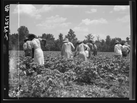 photo exhibit the black south of dorothea lange all