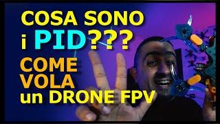 COSA SONO I PID e COME SI MUOVE un DRONE FPV | GUIDA ai PID | PID CONTROLLER - GYRO - SETPOINT