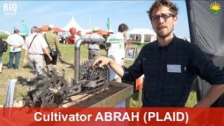 New ABRAH cultivator by DULKS – Hoeing right next to young, tender plants