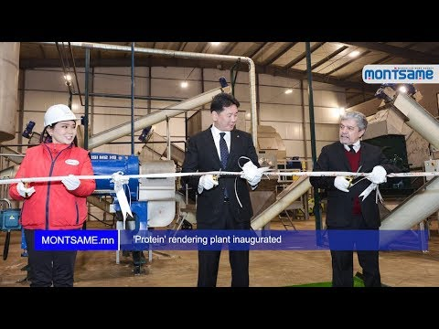 'Protein' rendering plant inaugurated