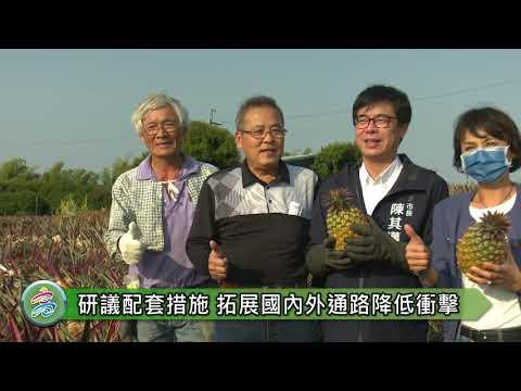 中國禁台灣鳳梨 陳其邁:違反國際貿易常規 研擬多元行銷協助農民