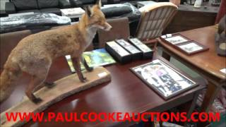 UNRESERVED Furniture & IT Equipment Auction Sneak Peak