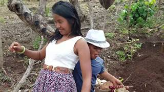 COSAS ENTRE  SUEGRA Y YERNO  DARWIN Y NOEMI - AYUDANDO A MARIELA Y RENE Parte 6 / EL SALVADOR GO!