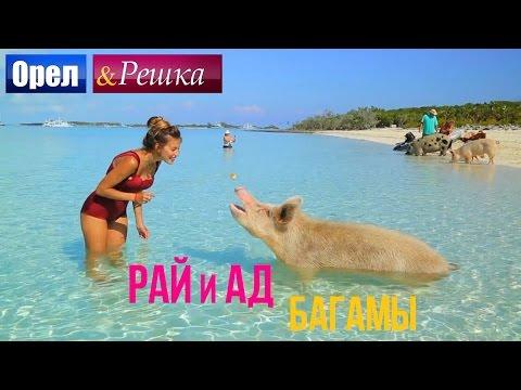 Орел и решка. Рай и Ад - Райские Багамы  (1080p HD)