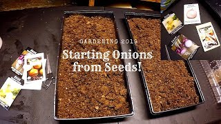 Starting Onions from Seed   Gardening 2019!   Finally Time to Start!