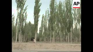 Arid northwest China taking steps to halt desertification