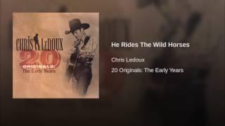 He Rides The Wild Horses
