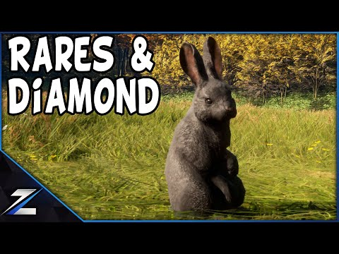 , title : 'All Rares And Diamond European Rabbits Call of the Wild'