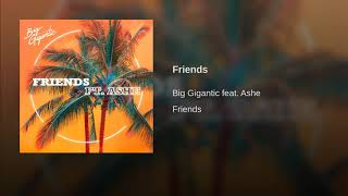 Big Gigantic   Friends