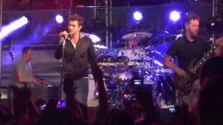 311 Cruise 2013 - Large in the Margin