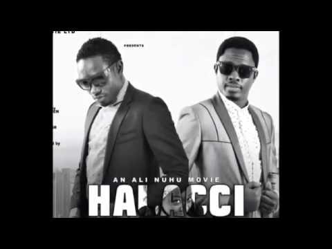 Download Halacci By Umar M Sharif HD Mp4 3GP Video and MP3
