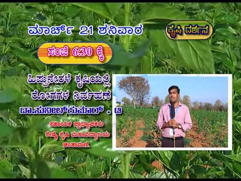 Krishidarshana   Watch on 21-03-2020 at 6.30pm   DD Chandana