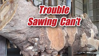 Trouble Sawing Can't