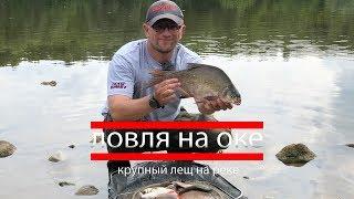 Лещ ловля на реке оке