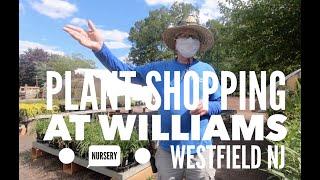 Plant shopping at Williams Nursery | WestField | NJ | 2020