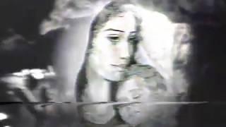 تحميل اغاني حب على الطريق الفلسطينية '' كاميليا جبران MP3
