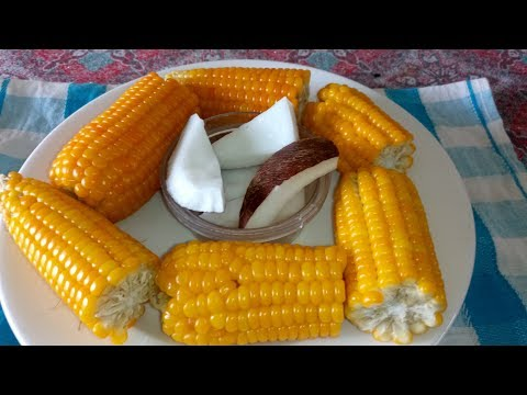 Boiling Corn on the Cob: How To Boil Corn on the Cob on the Stove
