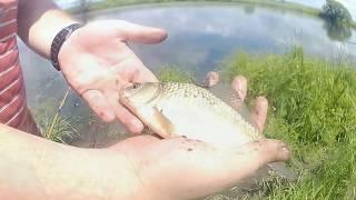 Куда поехать рыбалку на карася приморский край