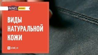 Виды натуральной кожи. Виды покрытий - кожаные куртки и кожаные сумки.