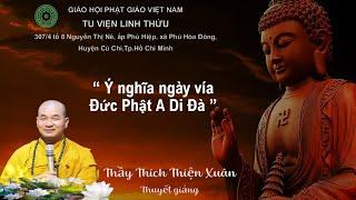 Ý Nghĩa Vía Đức Phật A Di Đà - ĐĐ. Thích Thiện Xuân