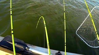 #рыбалка2020 #рыбалканакарпа #рыбалка  одежда для рыбалки nova-tex.ru  лодку брал тут  https://snegirfishing.ru/  катушка с али http://ali.pub/4y7g8g  моя плетенка http://ali.pub/4wnvok  карабины http://ali.pub/4yza4j