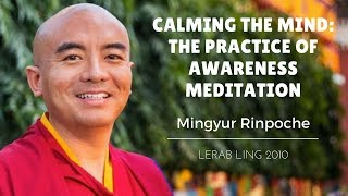 Mingyur Rinpoche ~ Calming the Mind: The Practice of Awareness Meditation