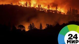 Калифорния в огне: рай превратился в ад - МИР 24