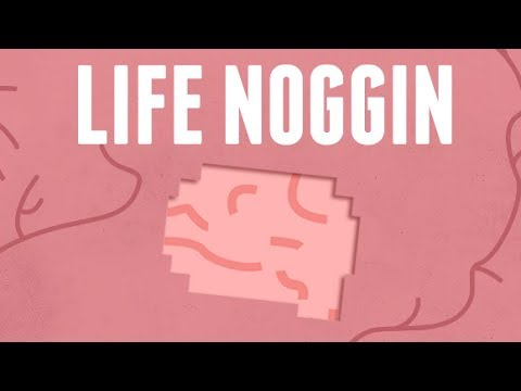 Welcome To Life Noggin!