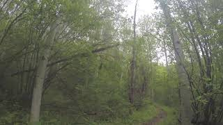 Sun Dog's Vlog: Opening Day on some of our fave singletrack trails!
