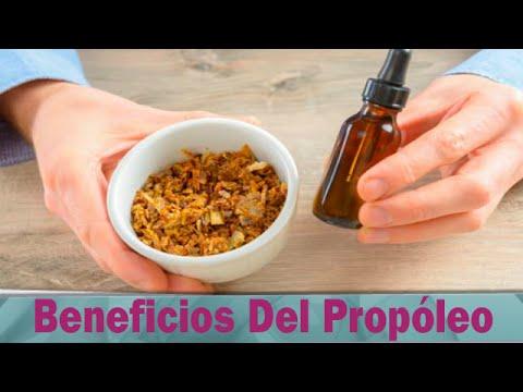 Beneficios Del Propoleo: Disfruta De Estos Beneficios Del Propoleo