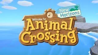Animal Crossing : New Horizons (dunkview)