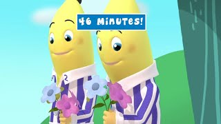 Valentines Day Animated Compilation - Full Episodes - Bananas In Pyjamas Official