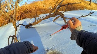 Ловля окуня на чертика по первому льду