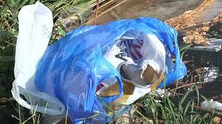 Patos de Minas registra queda no número de infectados pela dengue, mas situação ainda é de alerta.