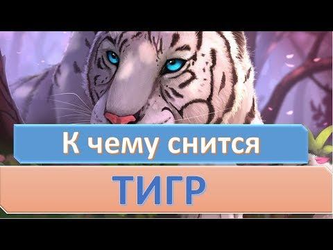 К чему снится тигр | СОННИК