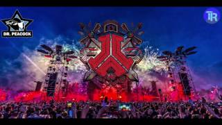 | Defqon.1 Weekend Festival 2017 | Warm Up Part 8 Dr. Peacock |