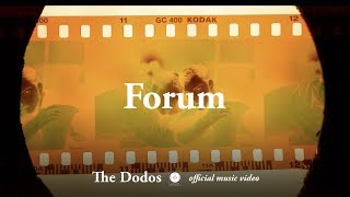 The Dodos - Forum [OFFICIAL MUSIC VIDEO]